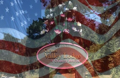hotel sign with metal flowers above it overlaid with the American flag shadowed across the entire photo