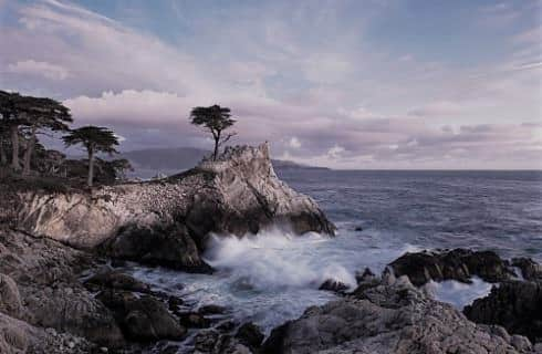 Rocky cliffs near the ocean with trees and a single Cypress tree high on one of the cliffs