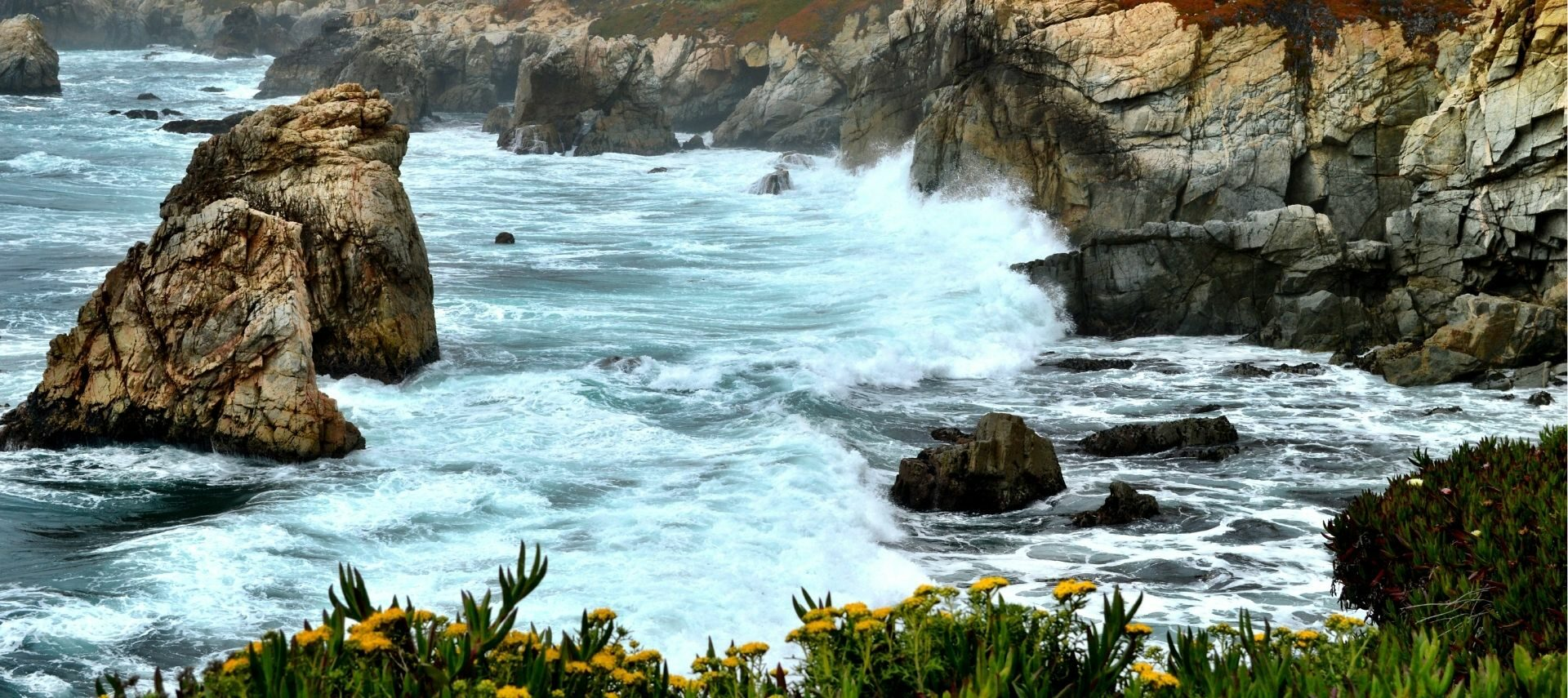 Carmel coast with ruggest coastline and white capped waves and yellow spring flowers