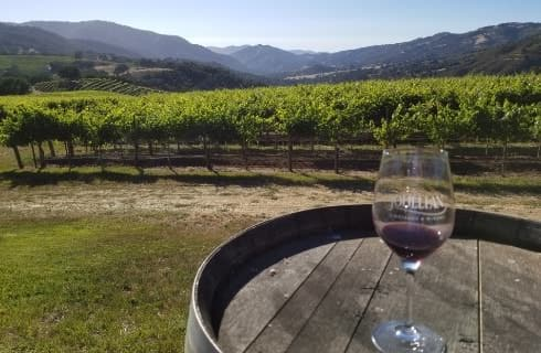 Wine glass filled with red wine sitting on wine barrel with orchard and hills in the background