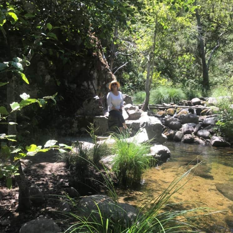 Woman sitting on large rock next to small stream surrounded by lush vegetation and rocks