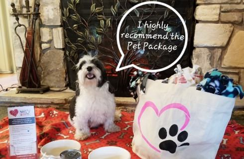 Small black and white dog sitting in front of fireplace on red dog blanket with dog supplies and a quote bubble saying I highly recommend the Pet Package